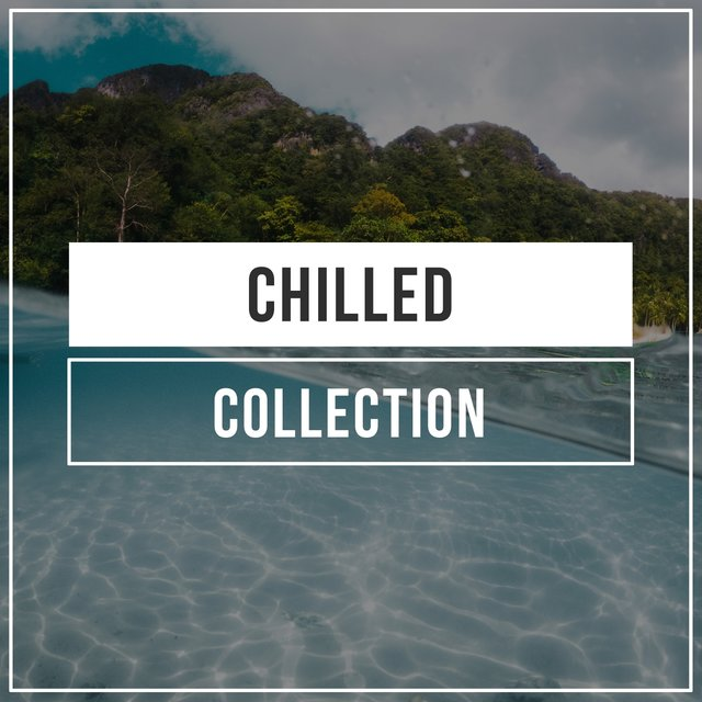 # 1 Album: Chilled Collection