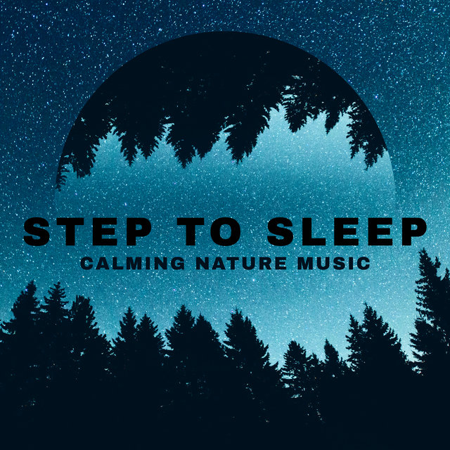 Step to Sleep - Calming Nature Music to Help You Get a Good Night's Sleep, Meditation (Feel More Self-control)