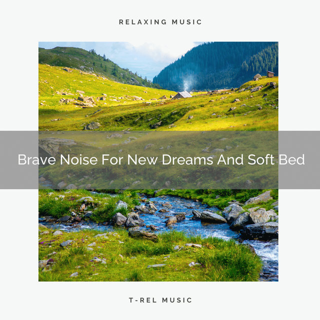 Brave Noise For New Dreams And Soft Bed
