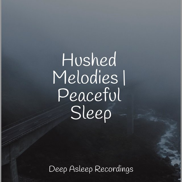 Hushed Melodies | Peaceful Sleep
