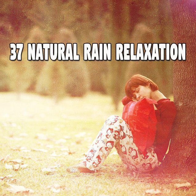 37 Natural Rain Relaxation