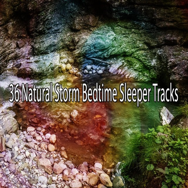 36 Natural Storm Bedtime Sleeper Tracks