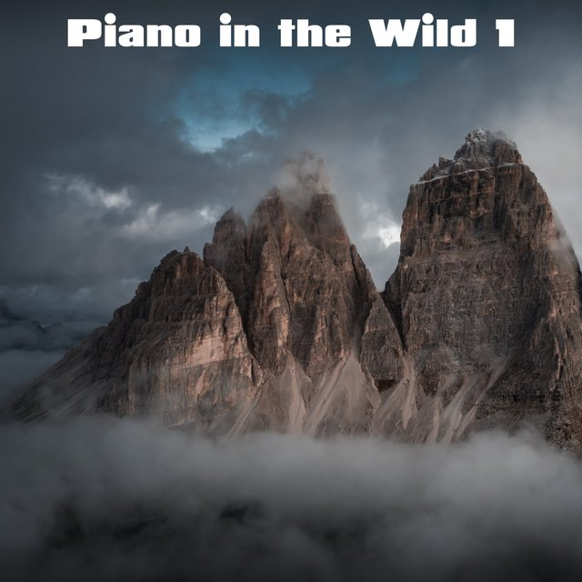 Piano in the Wild, Vol. 1