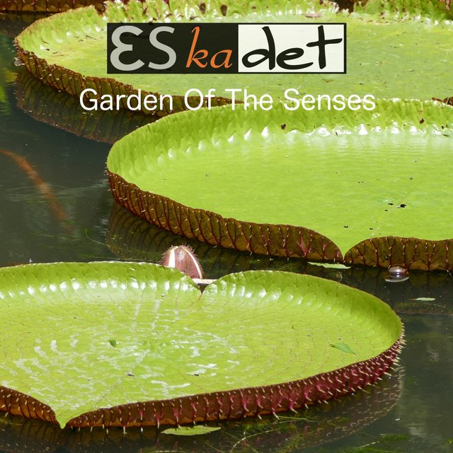 Garden of the Senses
