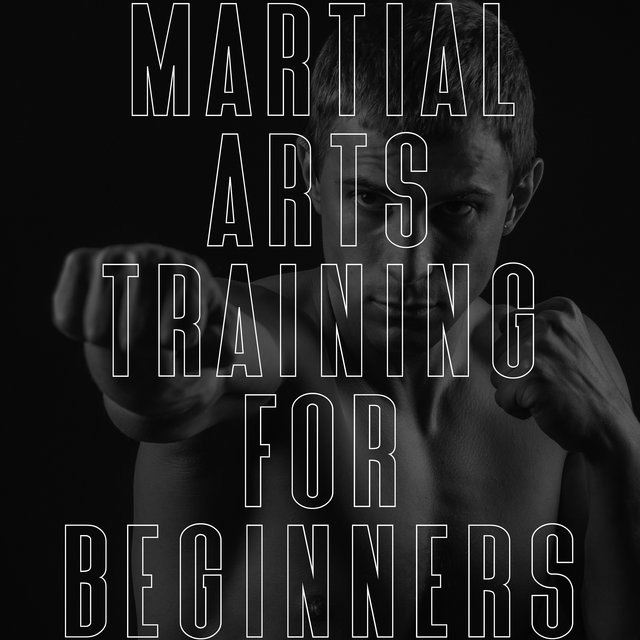 Martial Arts Training for Beginners at Home
