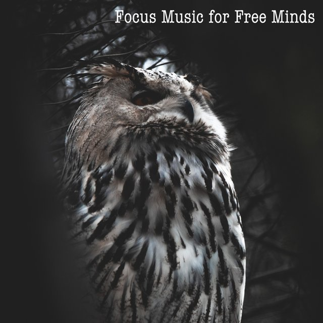 Focus Music for Free Minds