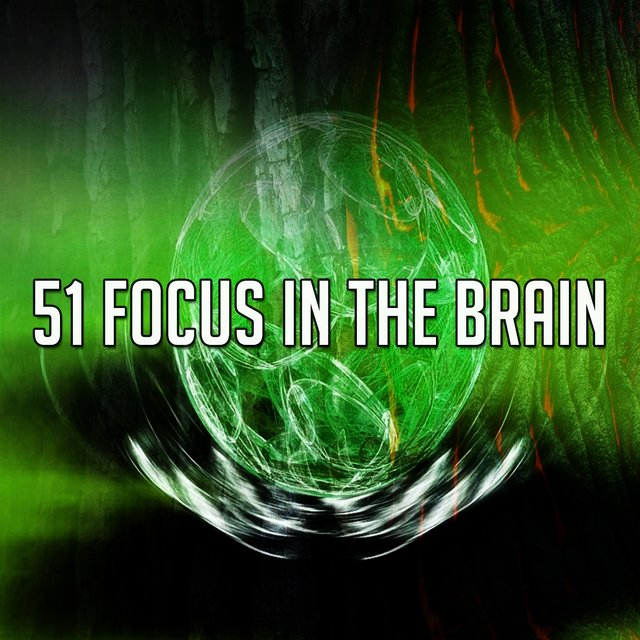 51 Focus in the Brain