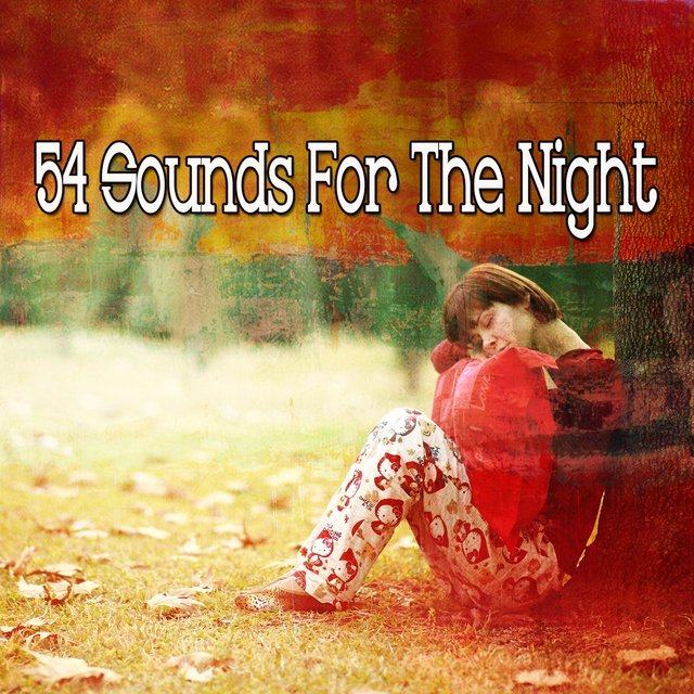 54 Sounds for the Night