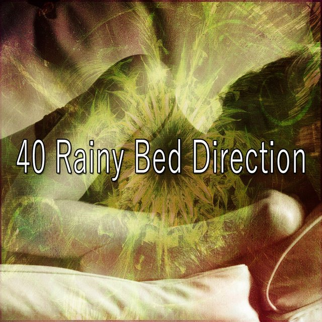 40 Rainy Bed Direction