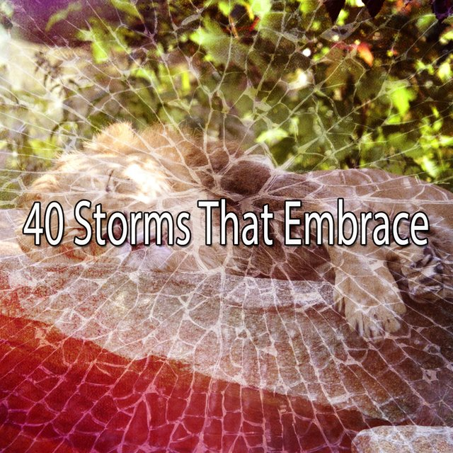 40 Storms That Embrace