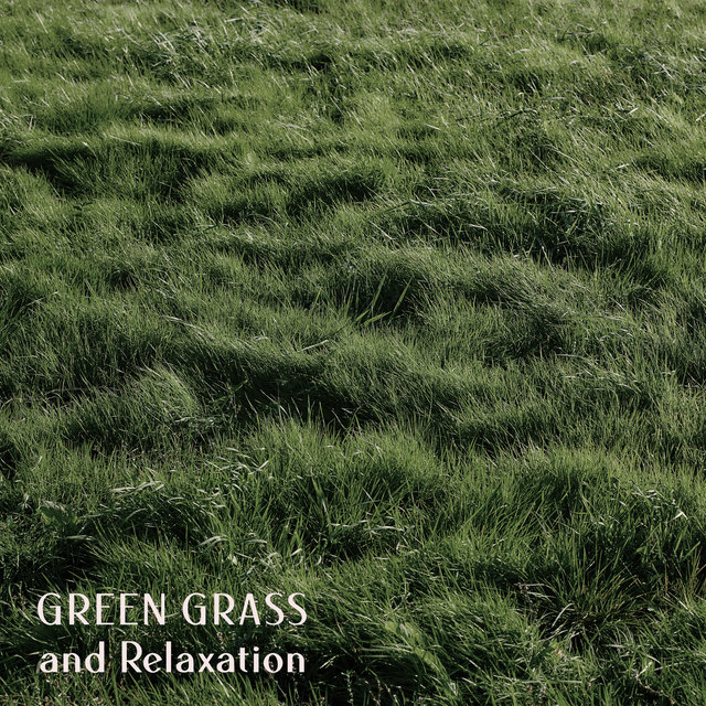 Green Grass and Relaxation - Instrumental Jazz Perfect for Lazy Weekend Days, Relaxing Moments, Sweet Emotion, Easy Listening Jazz, Day Off