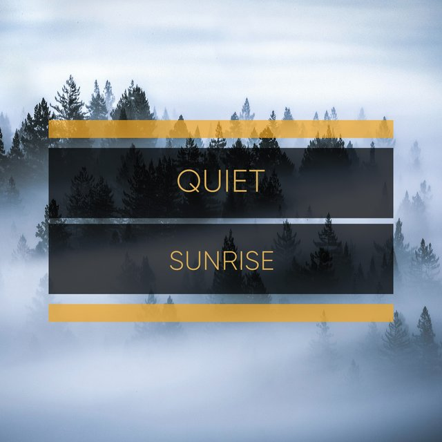 # 1 Album: Quiet Sunrise