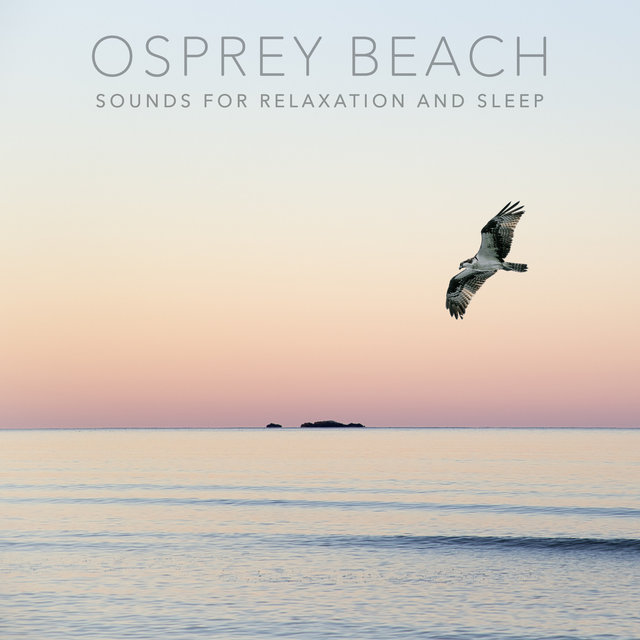 Osprey Beach (Sounds for Relaxation and Sleep)
