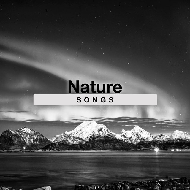 Reflective Natural Nature Songs