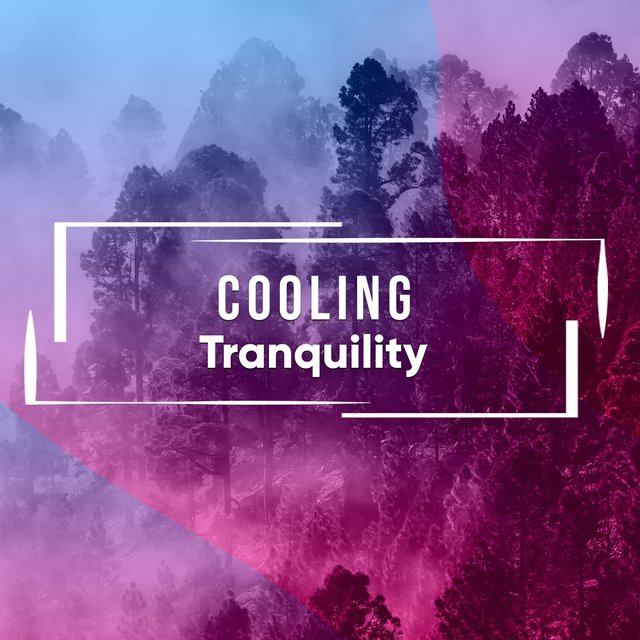 # 1 Album: Cooling Tranquility