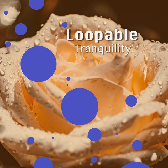 # 1 Album: Loopable Tranquility