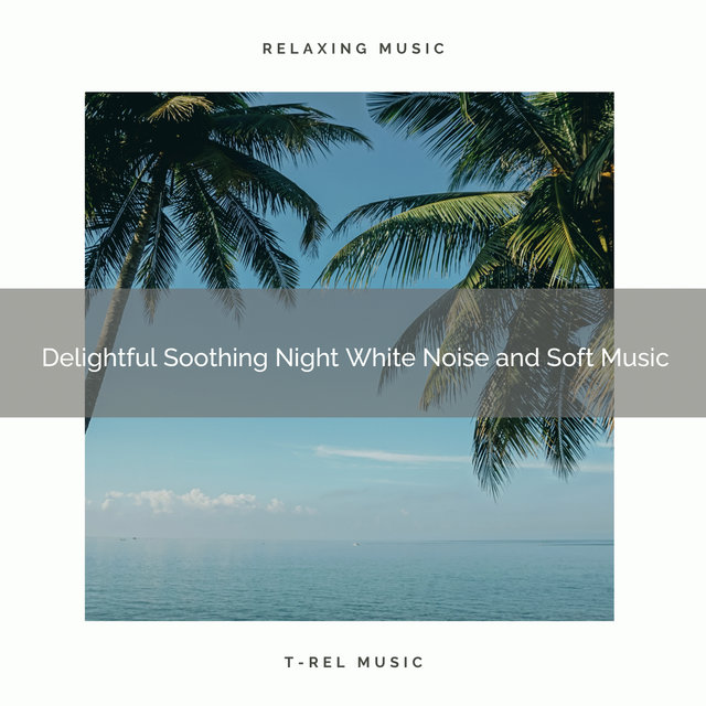 0001 Delightful Soothing Night White Noise and Soft Music