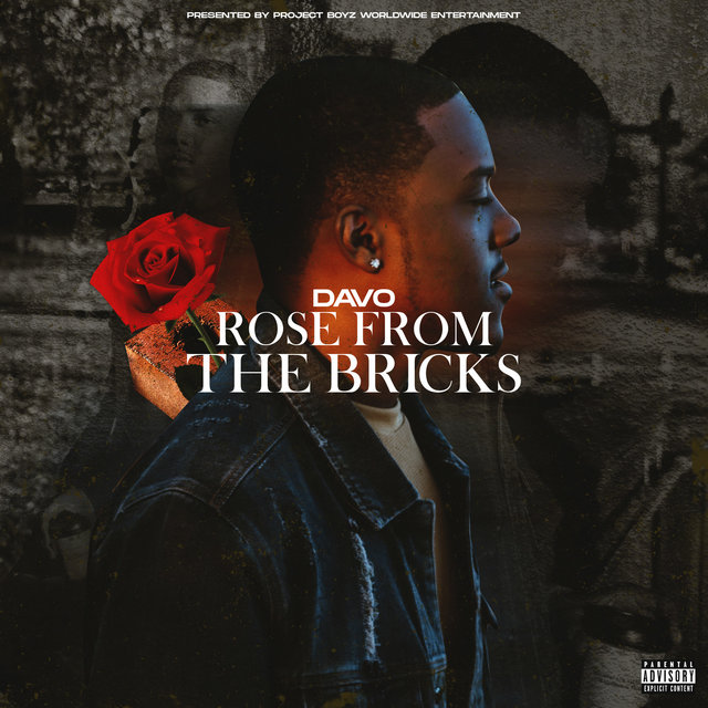 Rose from the Bricks