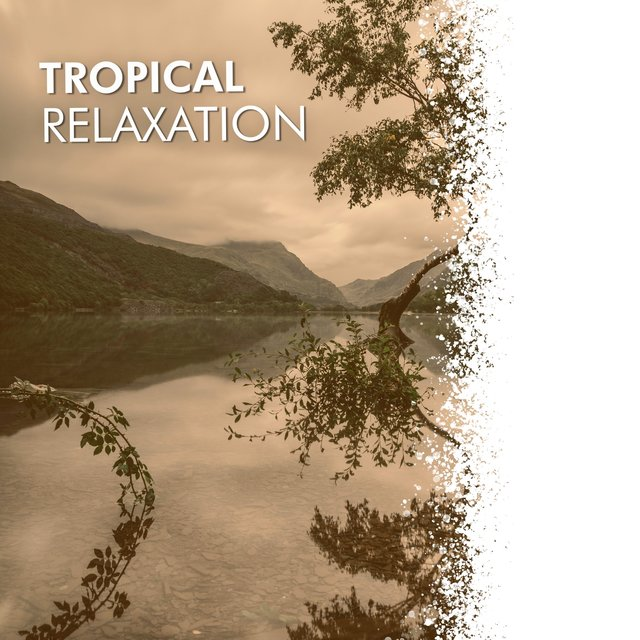 # 1 Album: Tropical Relaxation