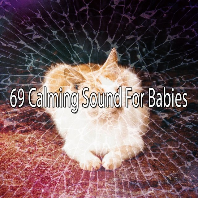 69 Calming Sound for Babies