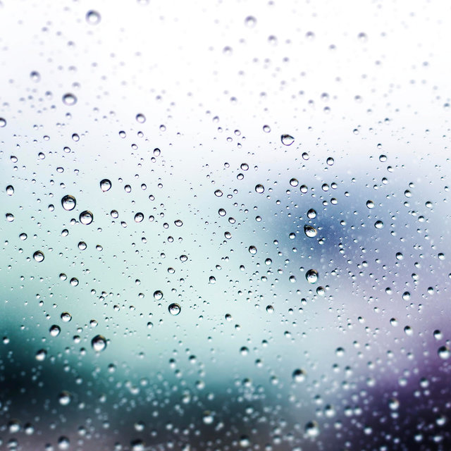 The Sleep Therapy: Calm Drizzling Rain