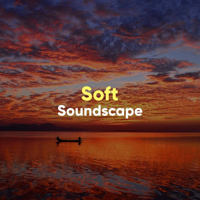 # 1 Album: Soft Soundscape