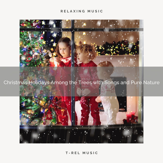 Christmas Holidays Among the Trees with Songs and Pure Nature