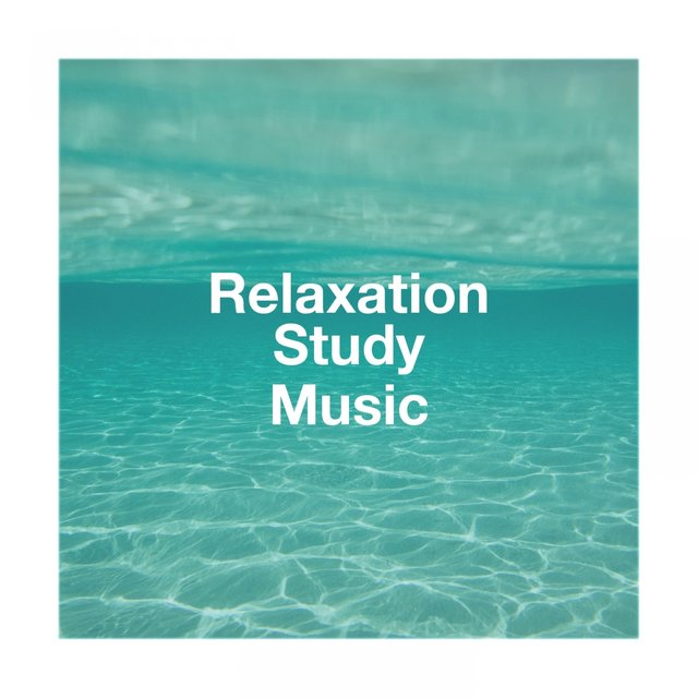 Relaxation Study Music