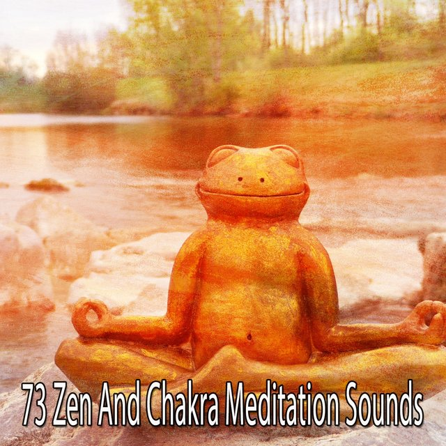73 Zen and Chakra Meditation Sounds