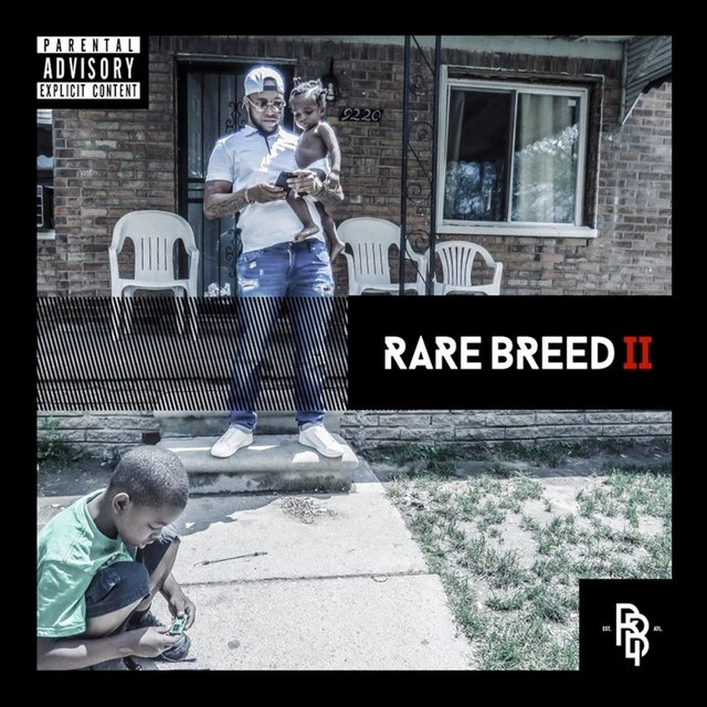 Cover art for album Rare Breed, Vol. 2 by Donnie B