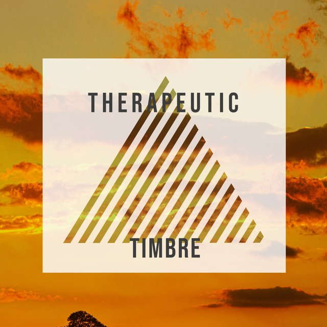 # 1 Album: Therapeutic Timbre