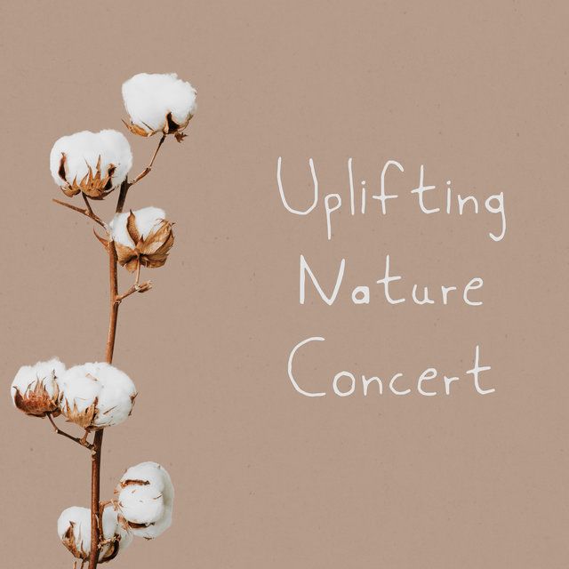 Uplifting Nature Concert – Music For Sleep, Relax, Study, Meditation