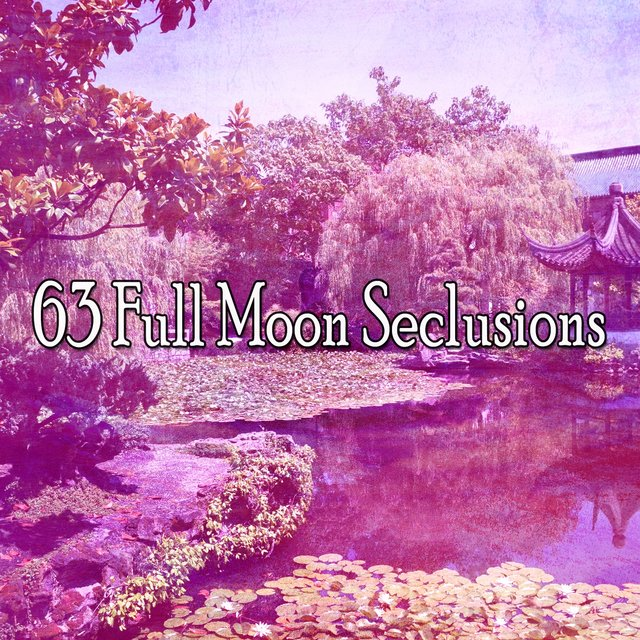 63 Full Moon Seclusions