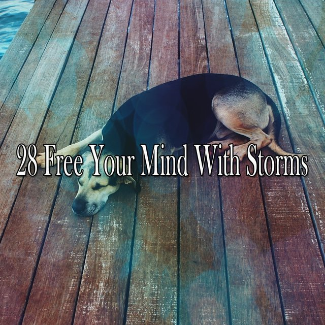 28 Free Your Mind with Storms