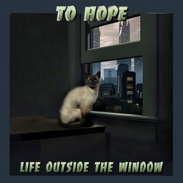 Life Outside the Window