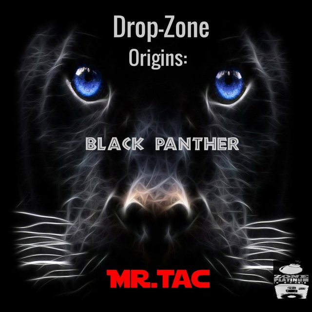 Drop-Zone Origins: Black Panther