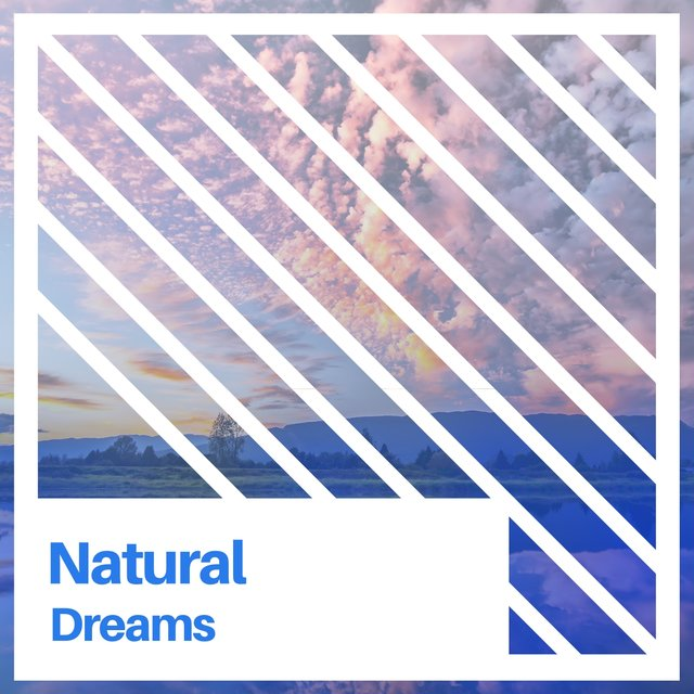 Natural Dreams