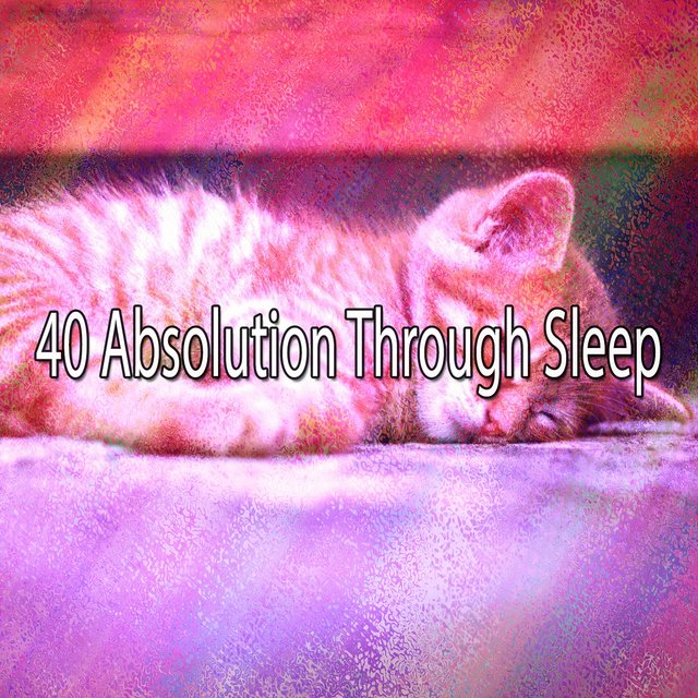 40 Absolution Through Sle - EP