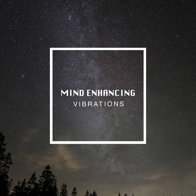 # 1 Album: Mind Enhancing Vibrations