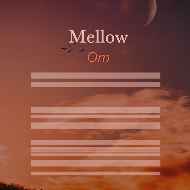 # 1 Album: Mellow Om