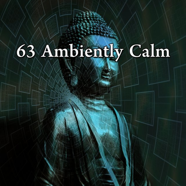 63 Ambiently Calm